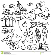 coloring book cartoon farm goose and animals stock illustration