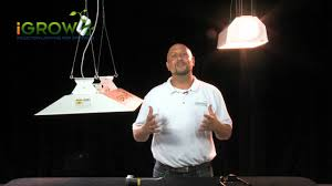 plant lighting energy efficiency the end of the 1000 watt grow