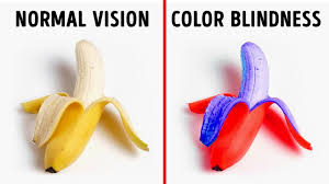 How Many People Are Color Blind How Color Blind People See The World Youtube