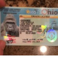 Ohio Meme - hio ohio 1802 driver license t m00 in nat oh 4522 db237402 05 27