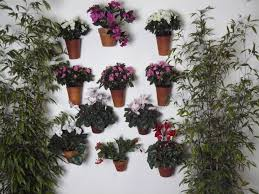 Flower Pot Sale Articles With Wall Mounted Flower Pot Holder Uk Tag Plant Pot