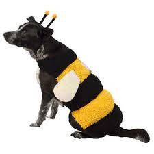 Dog Costume Halloween Pet Halloween Costumes Target