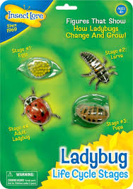 free ladybug themed printables and crafts for preschoolers