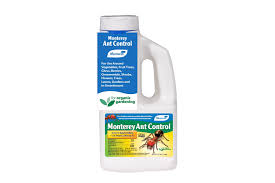 ant control easily control ants around the home and garden