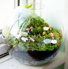 how to make a terrarium u2013 take a look at these 7 adorable ideas