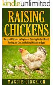 best backyard chicken backyard chickens for beginners getting the best chickens