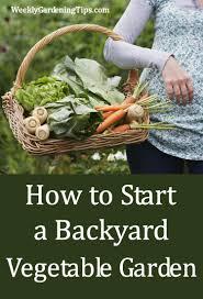 how to start a backyard vegetable garden u2022 weekly gardening tips