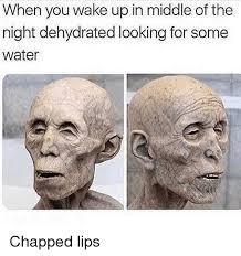 Chapped Lips Meme - chapped lips ustlick emibro chapped lips meme on me me