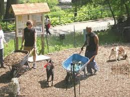 joe u0027s landscaping supplies cedar play chips u0026 hog fuel