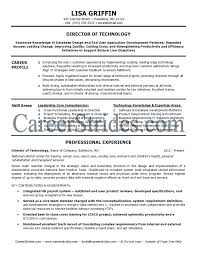 Sample Of It Resume by It Manager Resume Sample Berathen Com