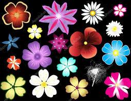All Types Of Flowers List - best 25 list of flower names ideas on pinterest names of