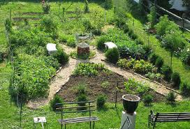 Potager Garden Layout Plans Formal Kitchen Gardens