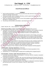exle of chronological resume resume sle for a chief financial officer cfo susan ireland