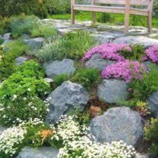 Rock Vegetable Garden Beautiful Gardening Ideas Vegetable Garden Layout Ideas