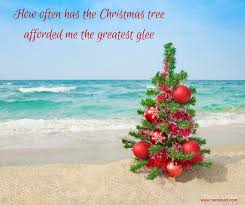 581 best coastal christmas images on pinterest coastal christmas