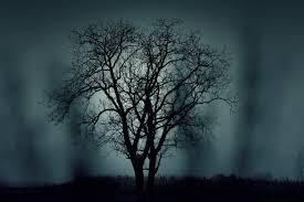 halloween horror nights age restrictions faq u2014 scarefest scream park
