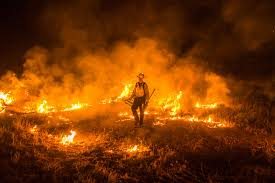 Wildfire California 2016 by As The Santa Rosa Fire Spreads See Inside Photographs Of Wildfires