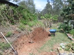 gully grove the veggie retaining wall