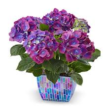 50th birthday flowers and balloons birthday gift ideas birthday gift guide 1800flowers