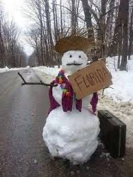 Memes About Snow - the 10 best florida winter memes i love south florida