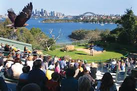 family holidays in sydney attractions things to do as a family