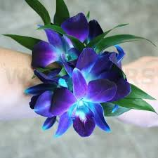 blue orchid corsage blue orchids wrist corsage w flowers ottawa