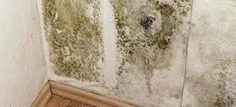 moisissure mur chambre nettoyer les moisissures sur un mur remèdes de grand mère