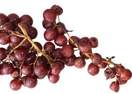 smoky paprika smoky paprika grapes