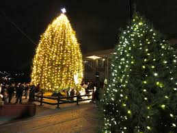 bethlehem pennsylvania christmas lights photos christmas city tree lighting ceremony bethlehem pa patch