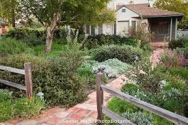 Drought Tolerant Landscaping Ideas Drought Tolerant Landscape Design Renew Drought Tolerant
