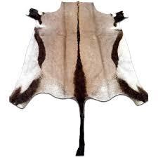 Bison Hide Rug Best 25 Animal Skin Rug Ideas On Pinterest Cow Skin Rug