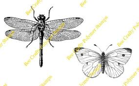 sts large birds butterflies dragonfly butterfly set
