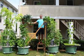 Vertical Aeroponic Garden In Greenwich The Doctor Is In The Garden That Is Greenwich