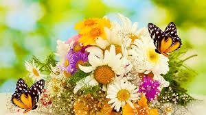 flowers blooms perfume balm essence corsage color arrangement