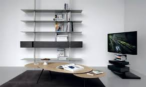 bookcase wall and swivel tv support extendo