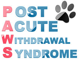post acute withdrawal syndrome benzodiazepines x x us 2017