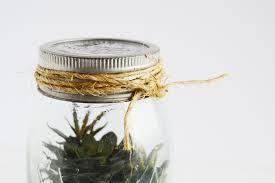 vintage mason jar diy terrarium diycandy com