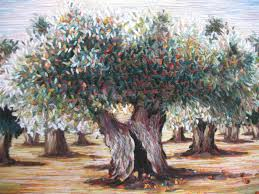i am an olive tree the fellowship