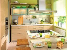 decorative contemporary kitchen with attractive ornaments