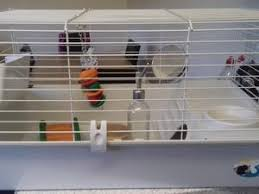 Indoor Hutch Hutches And Accessories For Sale Friday Ad