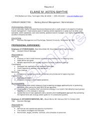 Sle Resume For A Banking objective for bank resume sevte