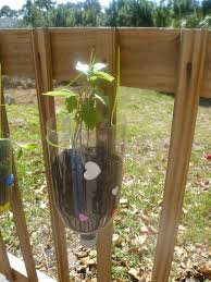 soda bottle hanging planters kids craft mama to 6 blessings