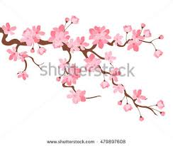 free cherry blossoms vector