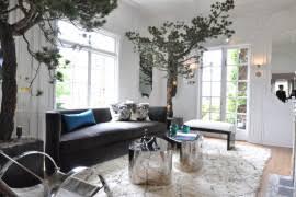 best low light indoor trees indoor tree low light myfavoriteheadache com myfavoriteheadache com