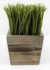 planter box grass display 7in
