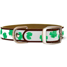 go green this st patrick u0027s day modern dog magazine
