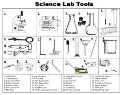 language of science worksheet worksheets