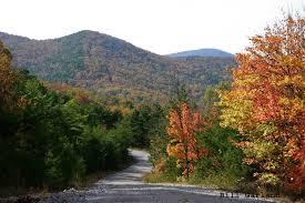 Alabama mountains images Mountain longleaf national wildlife refuge jpg