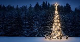 why do we decorate trees farmers almanac
