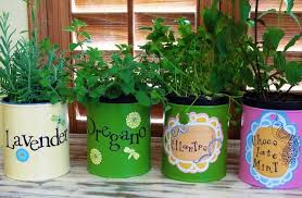 classy 50 herb garden ideas for kids design decoration of modren